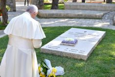 "La ""sana dottrina"" di Papa Francesco"
