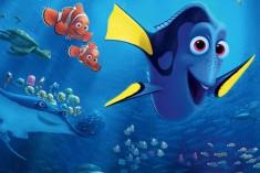 Cinecittà – La pesciolina smemorata fa innamorare