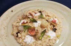 La Romagna nel risotto: lo Squacquerone