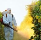 Pesticidi: il male minore?