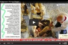 Rassegna Stampa – Tutto Rimini Economia Maggio 2016