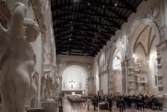 """Tempio di sera. Cattedrale  """"sotto""""  le stelle di S. Lorenzo"""