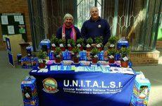 L'ulivo di Unitalsi: in piazza per la pace e il servizio