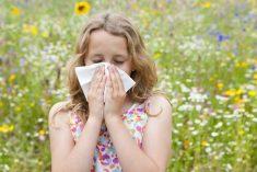 """Allergie vecchie e """"nuove"""""""