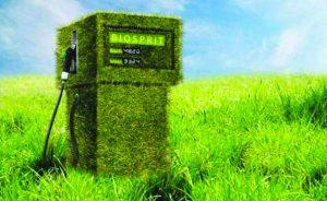 """Biocarburanti, una scelta davvero """"green""""?"""