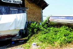 Mercato ittico… coi remi in barca