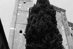 S. Agostino delle meraviglie