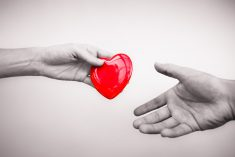 Donazione organi: in dodici mesi boom di no
