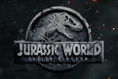 Empatia con i dinosauri a più livelli