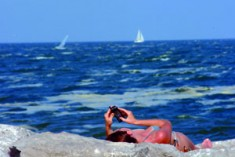 Alghe, fiumi inquinati e scarichi fognari:  c'è un mare da curare