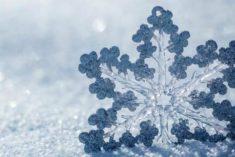 Settimana invernale con spruzzate di neve