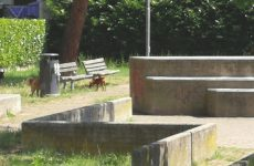 Riprogettiamo il parco Robinson