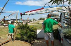 Green Booking e InfoAlberghi – già 485 le piante messe a dimora