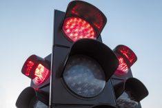Semaforo rosso: quanti indisciplinati