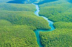 Amazzonia e modelli di sviluppo