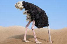 Caos climatico: politiche da struzzi