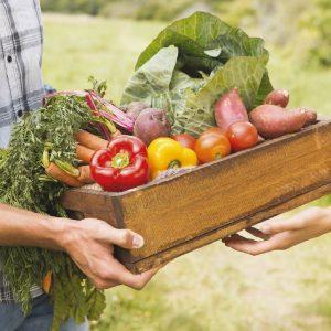 poco di buono, verdure solidali