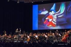 Fra i concerti sbuca il cinema