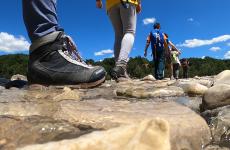 Cammini: un viaggio su Icaro TV