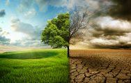"""Rimini: ogni residente emette 6 tonnellate di CO2. Urge un """"Patto per il clima"""""""