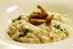 La Romagna nel risotto: i ranocchi di Conselice
